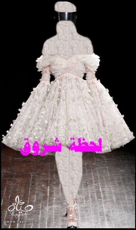 شتوية و  شتوية  و  شتوية hayahcc_1385753501_663.jpg