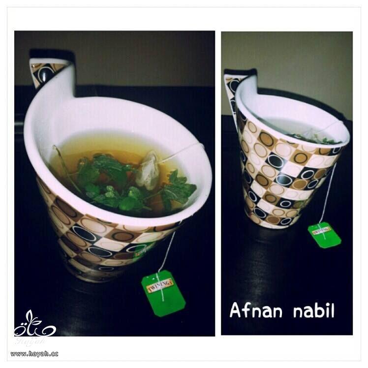 فوائد واضرار الشاي الاخضر hayahcc_1385925040_788.jpg