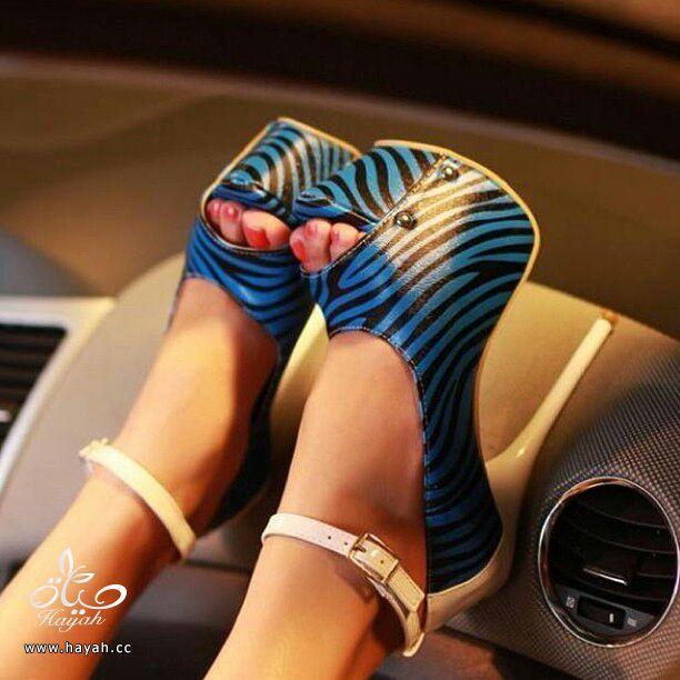 أحذية نسائية ( كعب ) أمريكية جميلة..يتوفر منها مقاسات hayahcc_1386895217_428.jpg