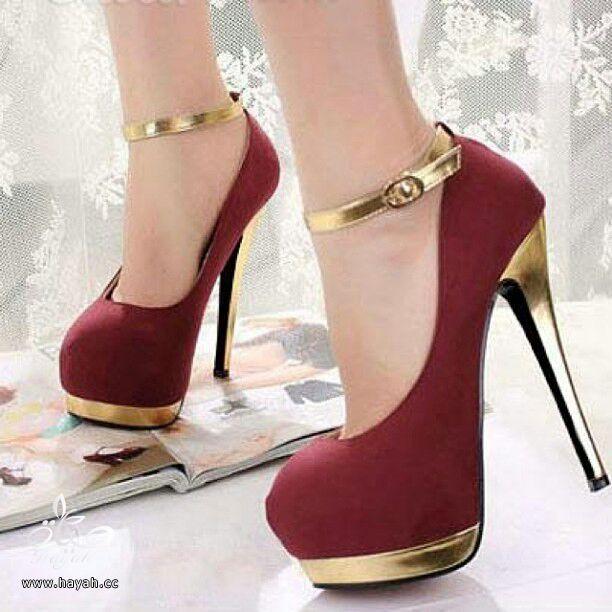 أحذية نسائية ( كعب ) أمريكية جميلة..يتوفر منها مقاسات hayahcc_1386895218_924.jpg