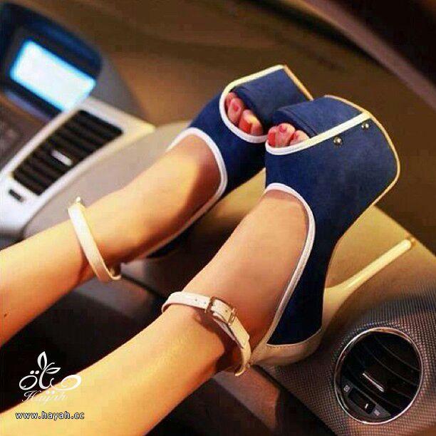 أحذية نسائية ( كعب ) أمريكية جميلة..يتوفر منها مقاسات hayahcc_1386895220_108.jpg
