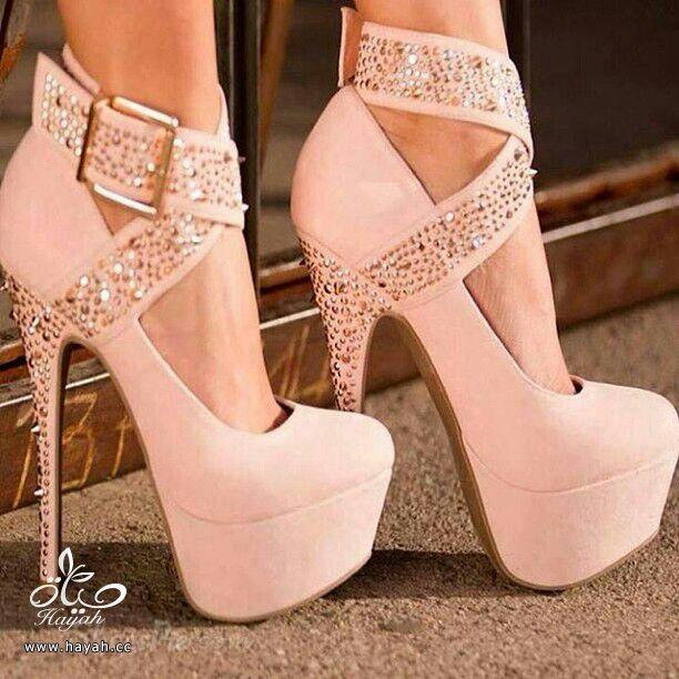 أحذية نسائية ( كعب ) أمريكية جميلة..يتوفر منها مقاسات hayahcc_1386895220_112.jpg