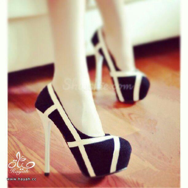 أحذية نسائية ( كعب ) أمريكية جميلة..يتوفر منها مقاسات hayahcc_1386895220_443.jpg