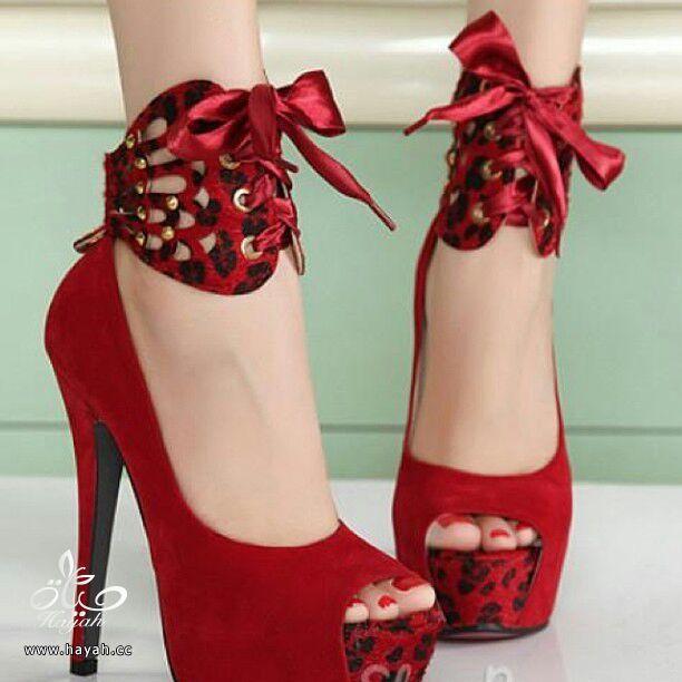 أحذية نسائية ( كعب ) أمريكية جميلة..يتوفر منها مقاسات hayahcc_1386895221_755.jpg
