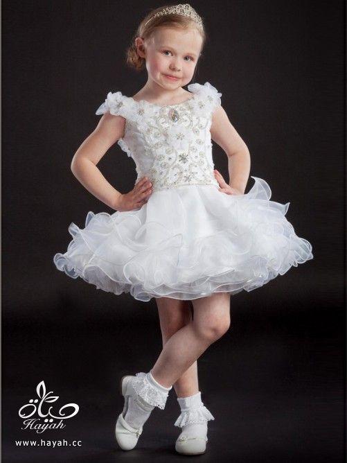 الحقى بنوتتك الصغيره - ملابس زفاف للاطفال - ملابس اعراس وزواجات للبنات والاطفال hayahcc_1387467600_269.jpg