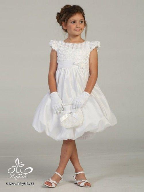 الحقى بنوتتك الصغيره - ملابس زفاف للاطفال - ملابس اعراس وزواجات للبنات والاطفال hayahcc_1387467606_854.jpg