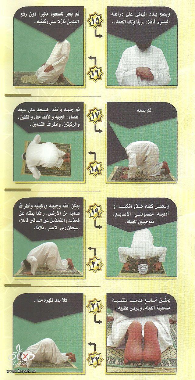 * * * صححي صلاتكي  ووضوءكي . . . فأول ما يحاسب عليه يوم القيامة الصلاة * * * hayahcc_1389953190_549.jpg