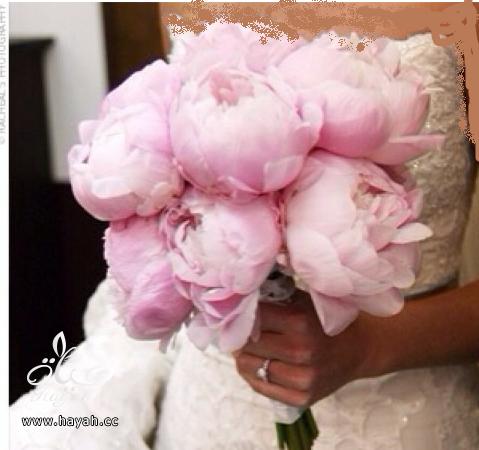 مسكات عروس باشكال جديده hayahcc_1390666364_962.png