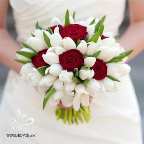 مسكات عروس باشكال جديده hayahcc_1390666370_969.png