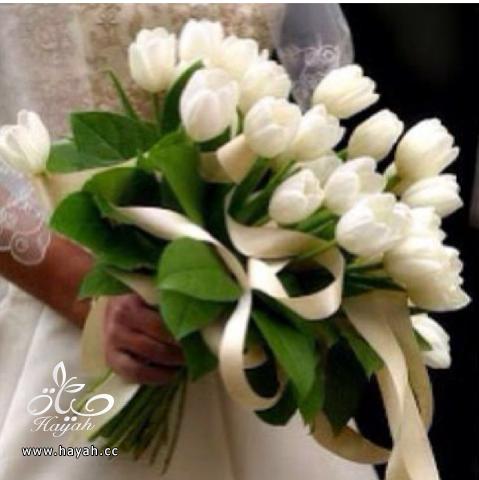 مسكات عروس باشكال جديده hayahcc_1390666372_860.png