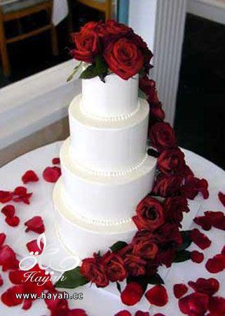 كيك زفاف فخم hayahcc_1390836972_336.jpg
