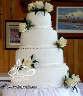 كيك زفاف فخم hayahcc_1390836976_927.jpg
