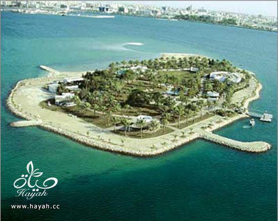 اجمل مناطق سياحيه في الخليج hayahcc_1392794081_698.jpg