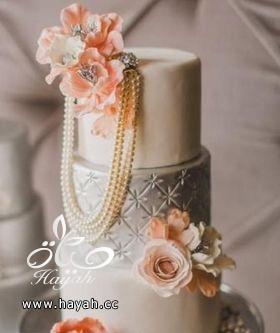 قوالب كيك حفلات الزفاف hayahcc_1392893882_794.png