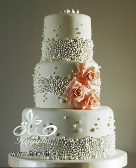 قوالب كيك حفلات الزفاف hayahcc_1392893883_225.png
