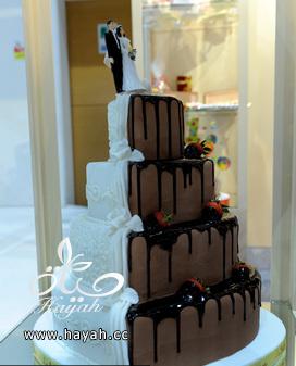 قوالب كيك حفلات الزفاف hayahcc_1392893884_420.png