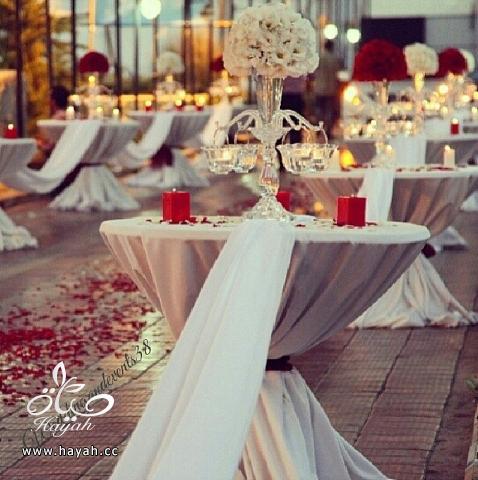ارقى تنسيقات طاولات قاعات الزفاف hayahcc_1392992983_566.png