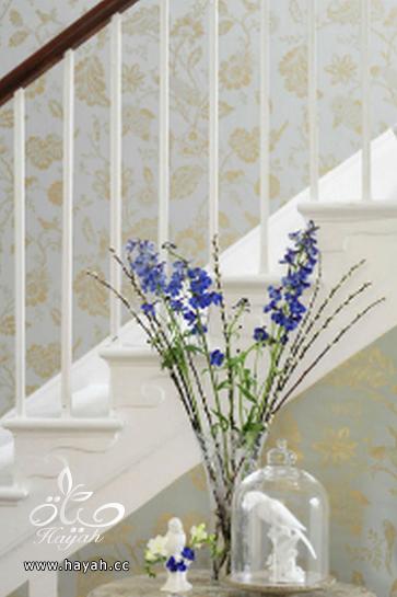 احدث تصاميم ورق الجدران hayahcc_1393329200_337.png