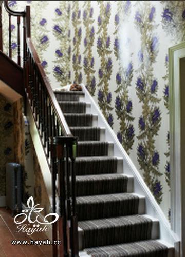 مجموعة تصاميم جديده لورق الجدران hayahcc_1393329491_678.png