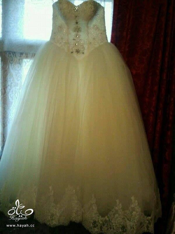 فساتين زفاف hayahcc_1393965023_577.jpg