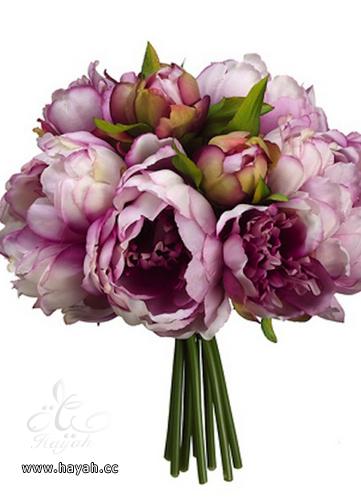 بالصور اجمل باقات العروس hayahcc_1394476792_457.png