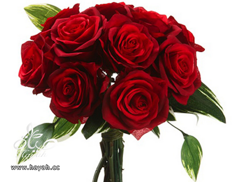 بالصور اجمل باقات العروس hayahcc_1394476793_324.png
