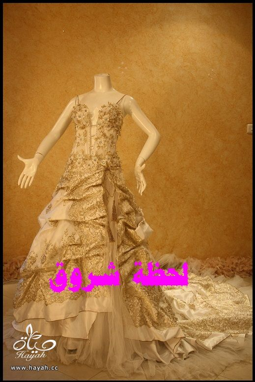 hayahcc_1394491886_750.jpeg