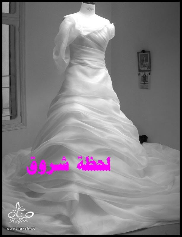hayahcc_1394491939_347.jpg