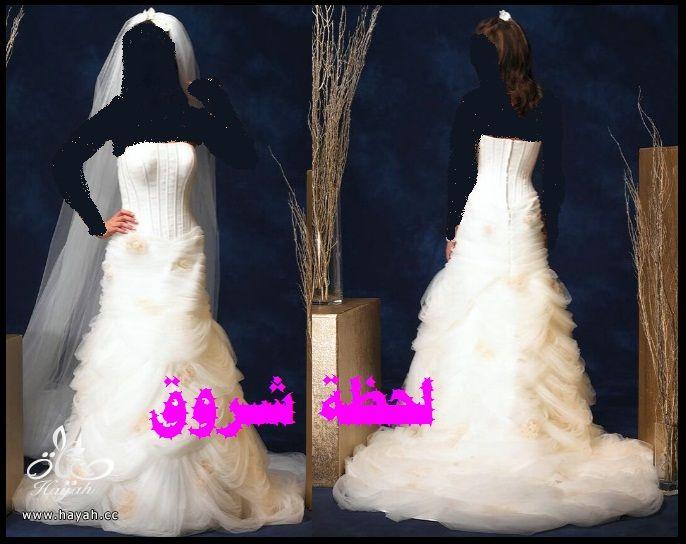 hayahcc_1394491940_264.jpg