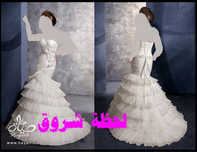 hayahcc_1394491973_318.jpg