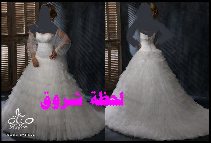 hayahcc_1394491973_329.jpg