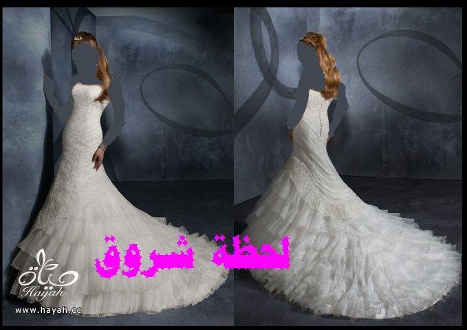 hayahcc_1394491973_663.jpg