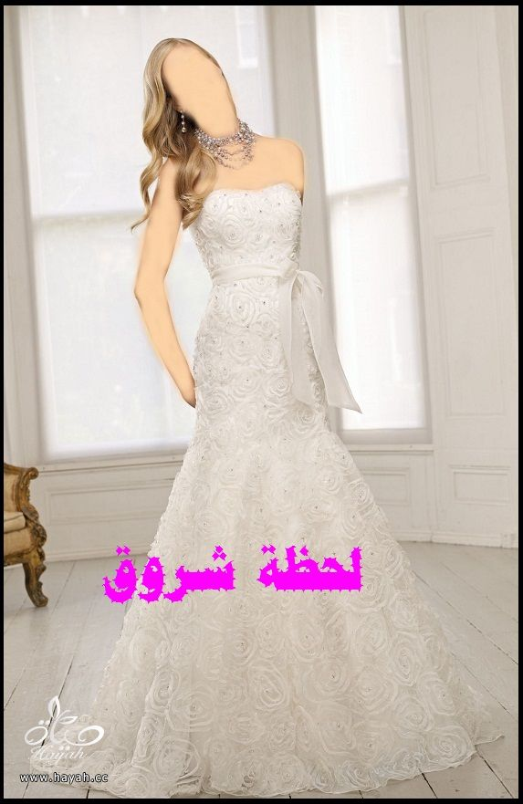 hayahcc_1394492005_243.jpg
