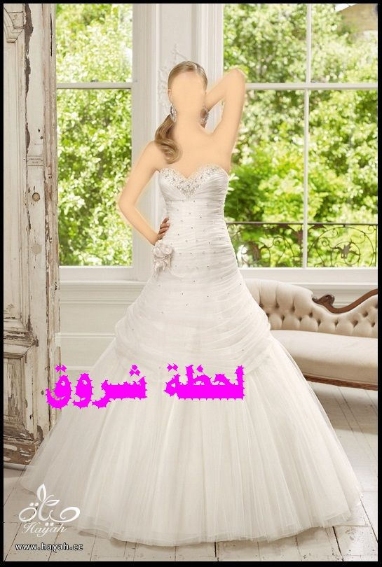 hayahcc_1394492005_699.jpg