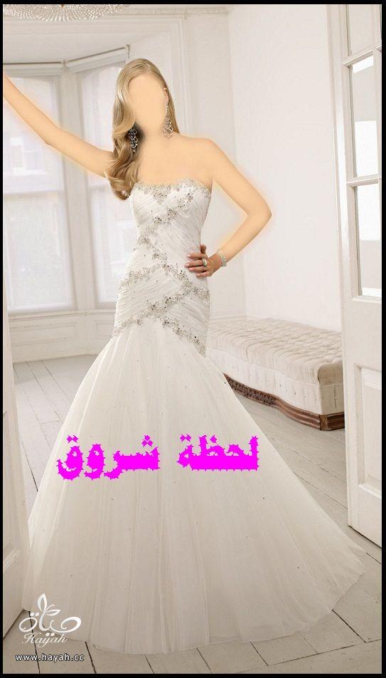 hayahcc_1394492006_849.jpg