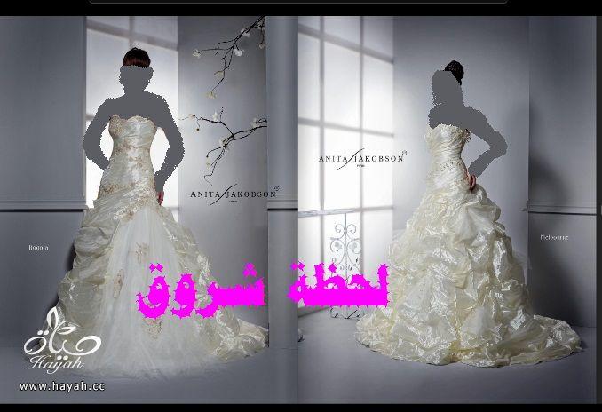 hayahcc_1394492037_480.jpg