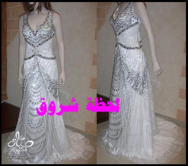 hayahcc_1394492038_438.jpg