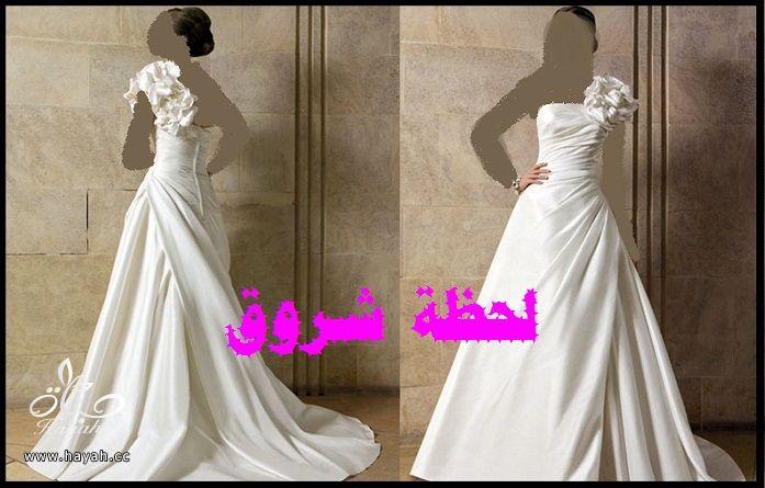 hayahcc_1394492038_455.jpg