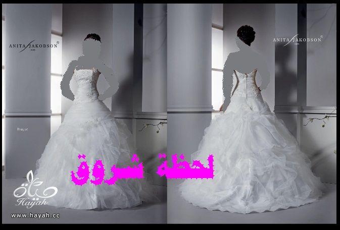 hayahcc_1394492039_753.jpg