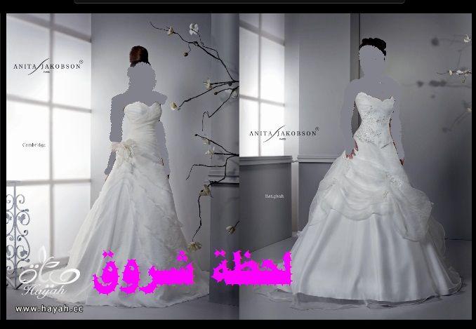 hayahcc_1394492072_986.jpg
