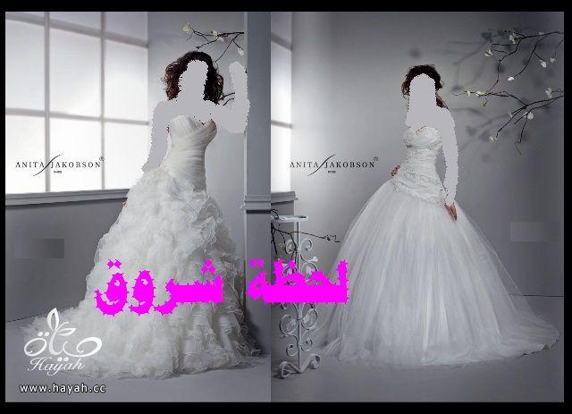 hayahcc_1394492073_238.jpg