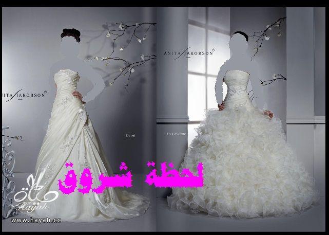 hayahcc_1394492103_493.jpg