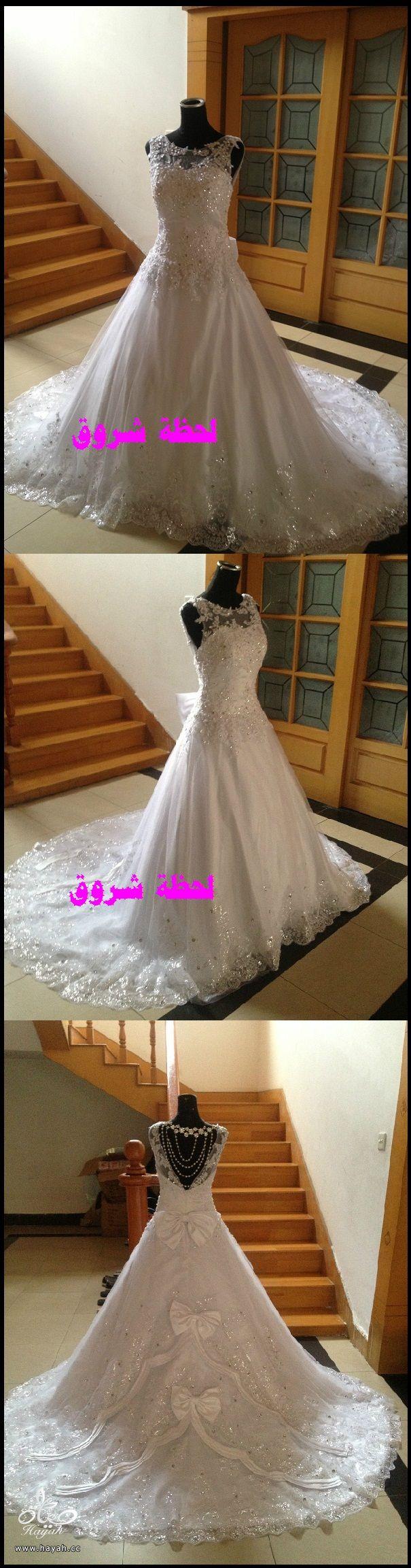hayahcc_1394492105_664.jpg