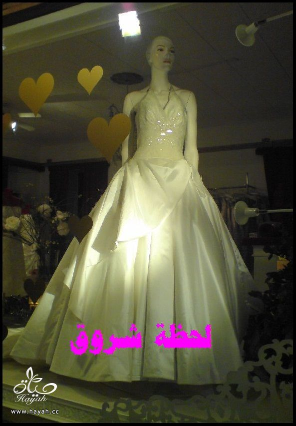 hayahcc_1394492137_175.jpg