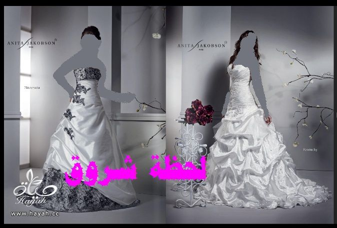 hayahcc_1394492137_198.jpg
