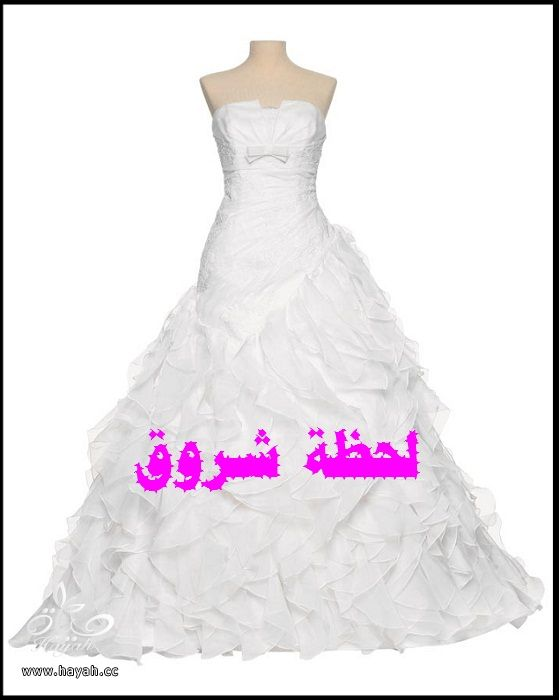 hayahcc_1394492139_401.jpg