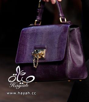 احلى مجموعة حقائب للصبايا hayahcc_1394589575_682.png