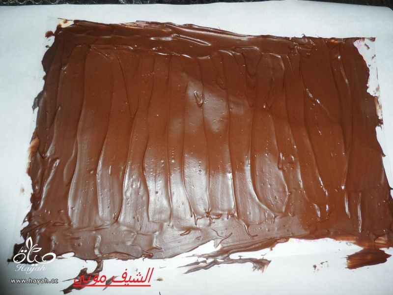 تورتة نجوم الشوكولاته من مطبخ الشيف مونى بالصور hayahcc_1395399242_832.jpg