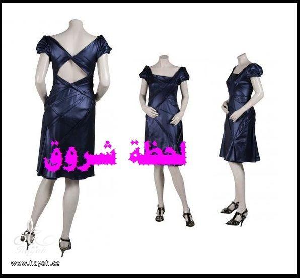 Dresses 2014 hayahcc_1397169490_746.jpg