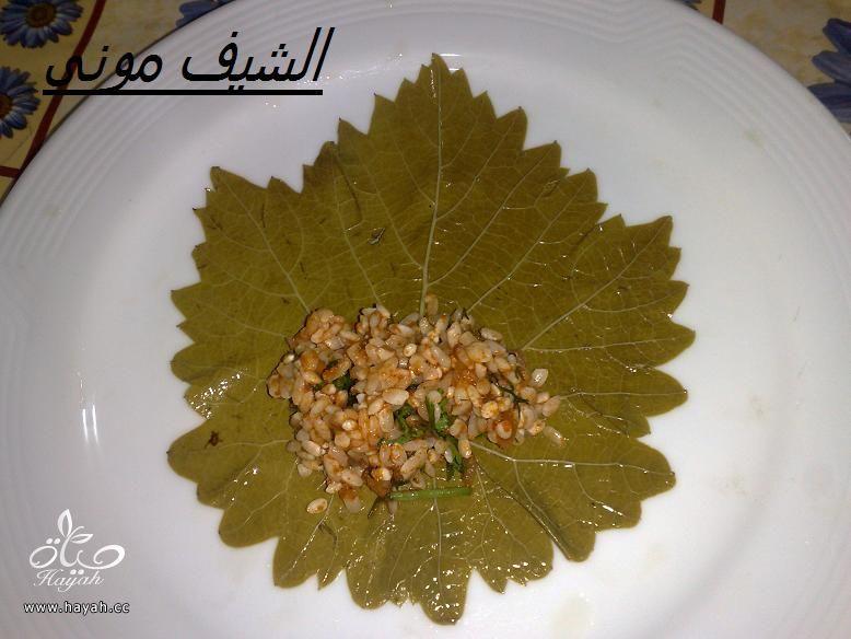 محشى ورق عنب للمبتدئات من مطبخ الشيف مونى بالصور hayahcc_1397297768_736.jpg